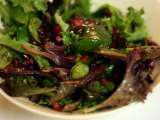 Recipe Pomegranate salad with soy vinegar dressing