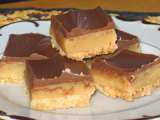 Recipe (twix copycat) chocolate-caramel-shortbread cookies
