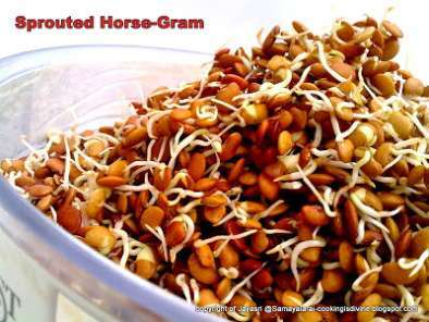 Recipe Sprouted horse gram and cabbage stir-fry