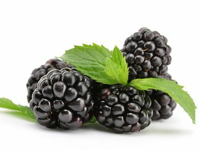 recipes blackberry